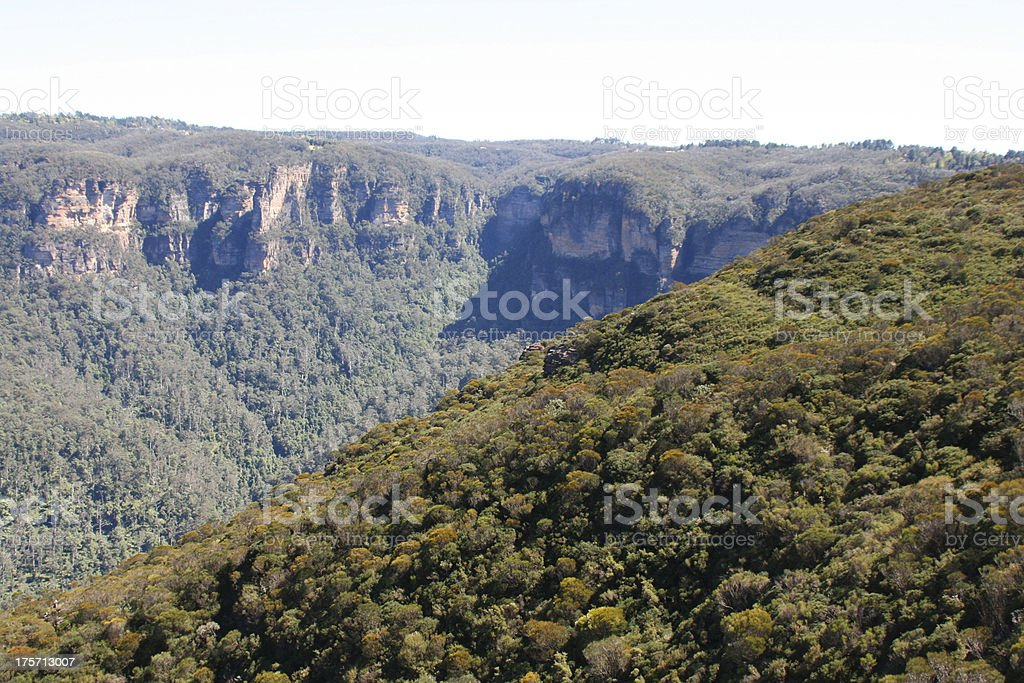 The blue mountain near Sidney in Australia royalty-free stock photo
