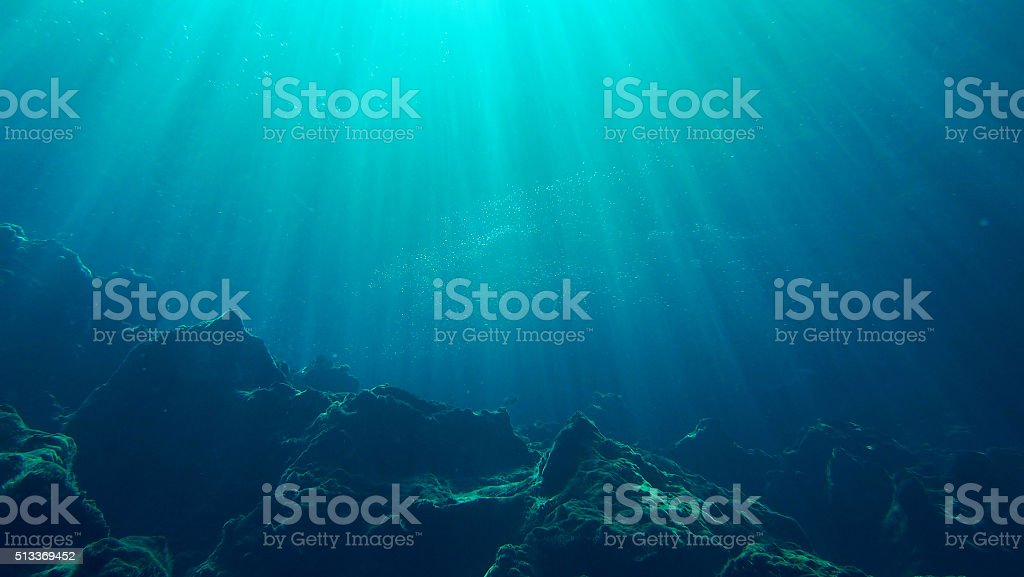 The Blue stock photo