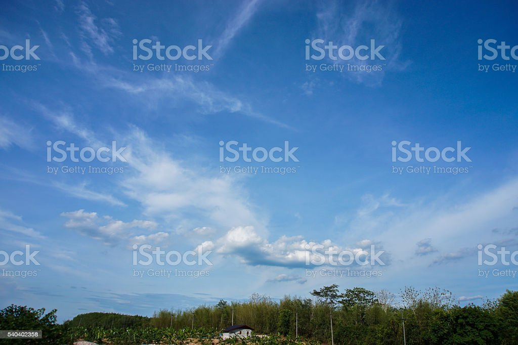 the blue sky and white cloud. stock photo