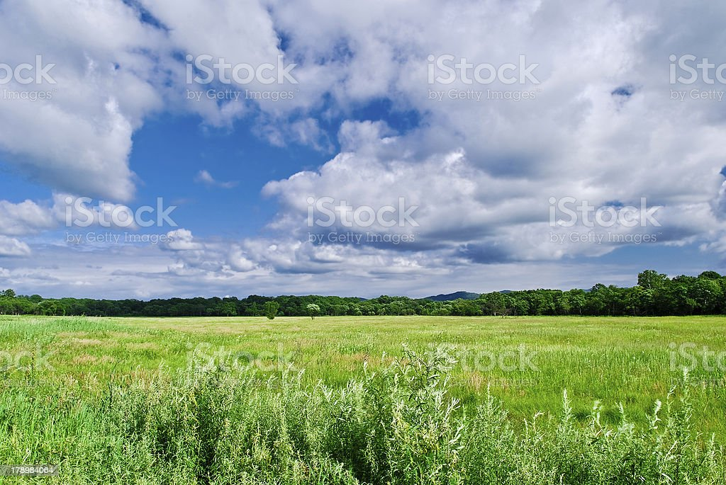 The blue sky with clouds over a field royalty-free stock photo