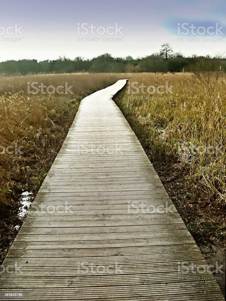 The Boardwalk at Cosmeston Lakes Country Park stock photo