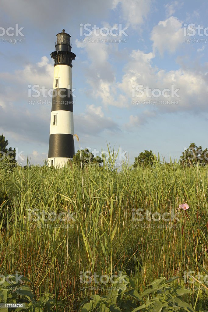The Bodie Island lighthouse from marshes vertical stock photo