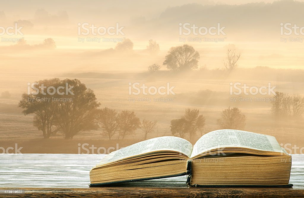 The book is on the table in the morning stock photo