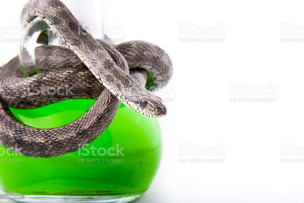 The bottle of poison twisted with a snake-focused stock photo