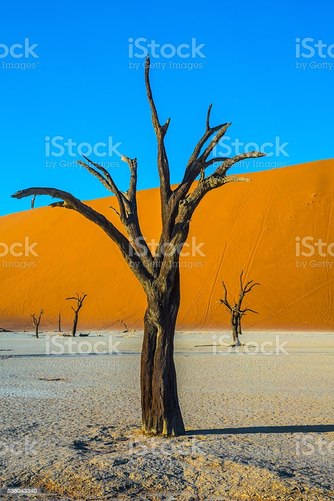 The bottom of a dry lake stock photo