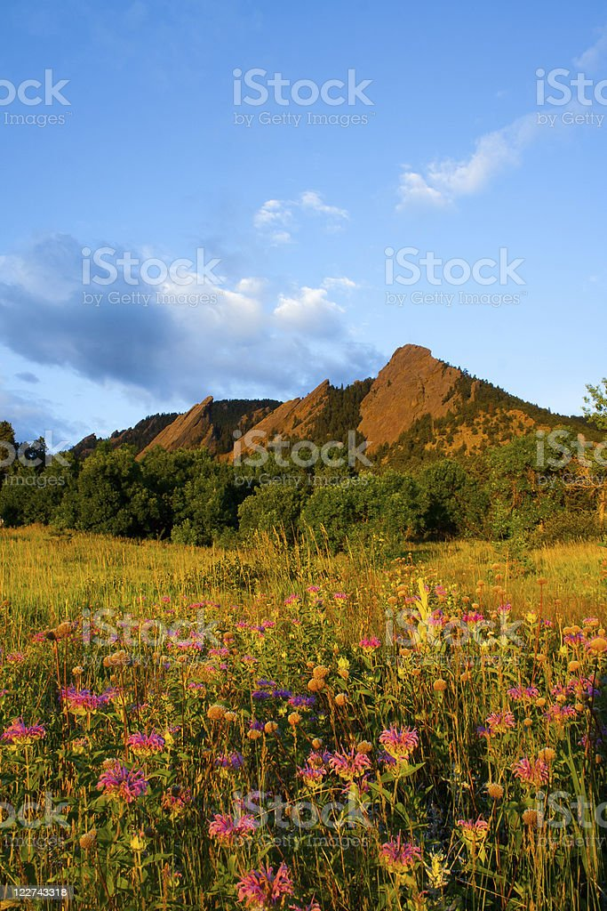 The Boulder Flatirons and a clear blue sky stock photo