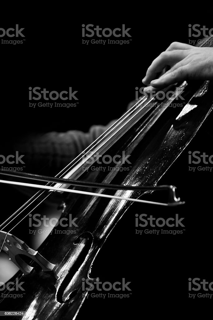 The bow on the strings of the cello stock photo