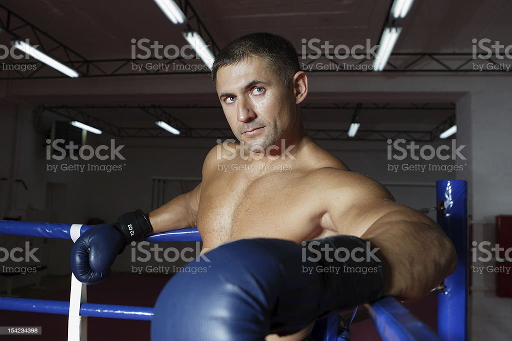 The boxer costs near ropes royalty-free stock photo
