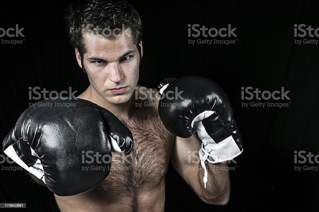 The Boxer in Gloves Isolated on Black stock photo
