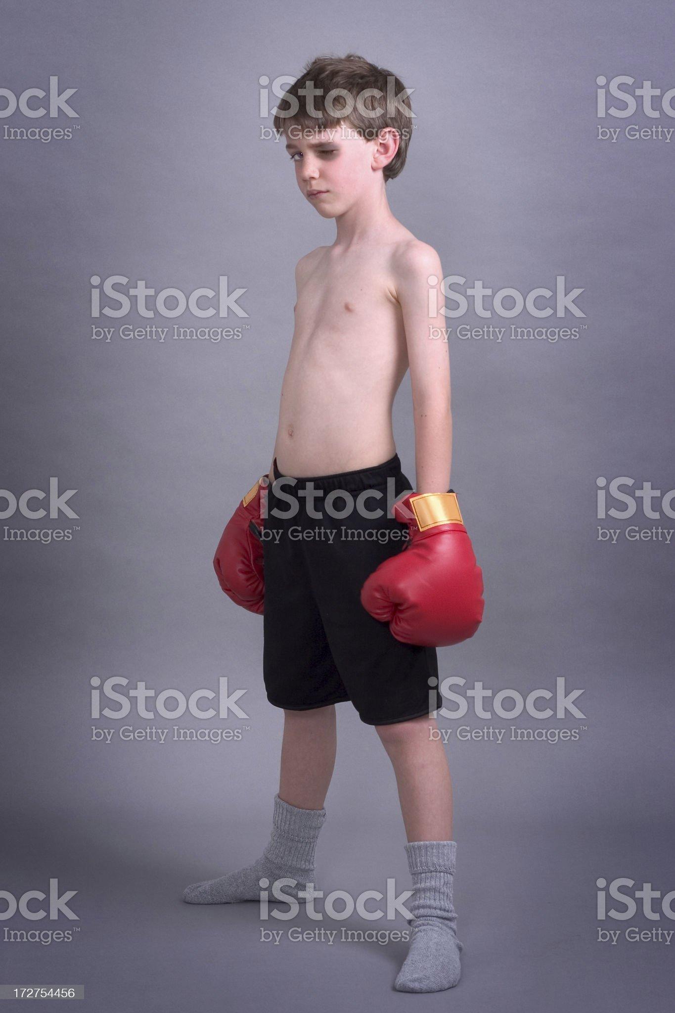 The Boxer royalty-free stock photo