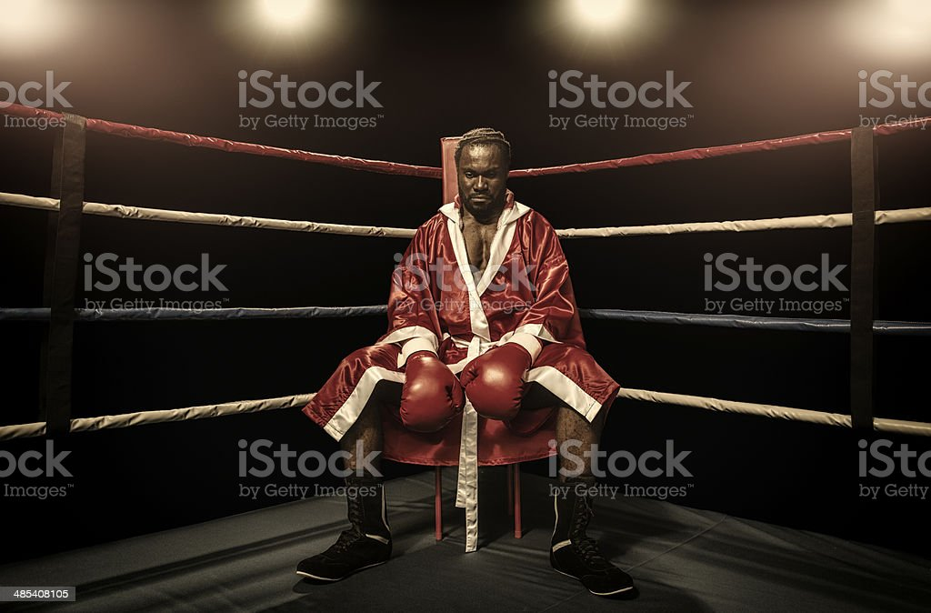 The boxer stock photo