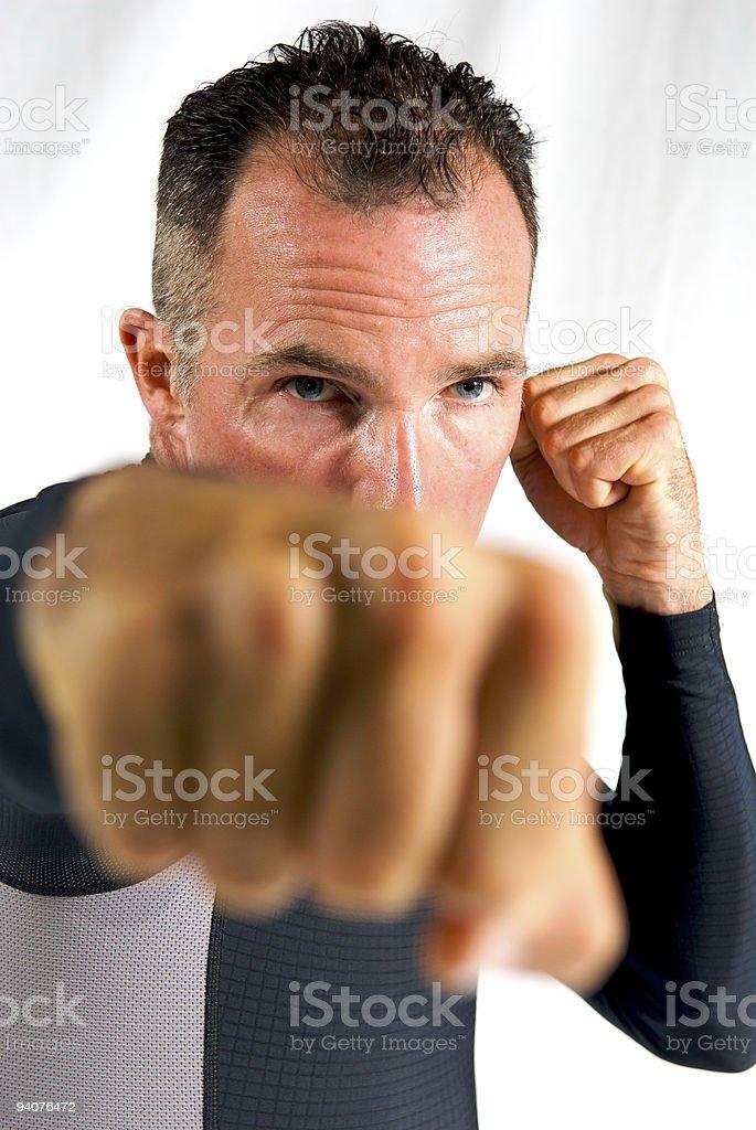 The Boxer stock photo