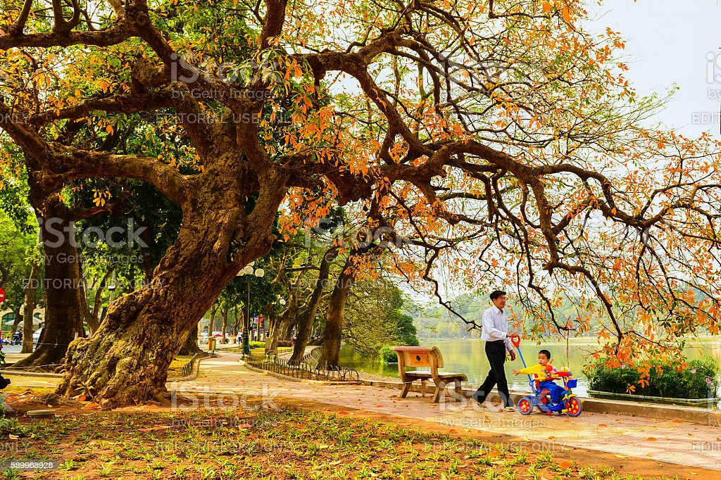 The boy and his grandpa walk around Hoan Kiem lake stock photo