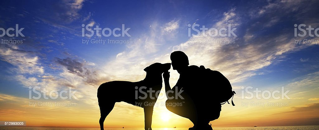 The boy with a dog stock photo