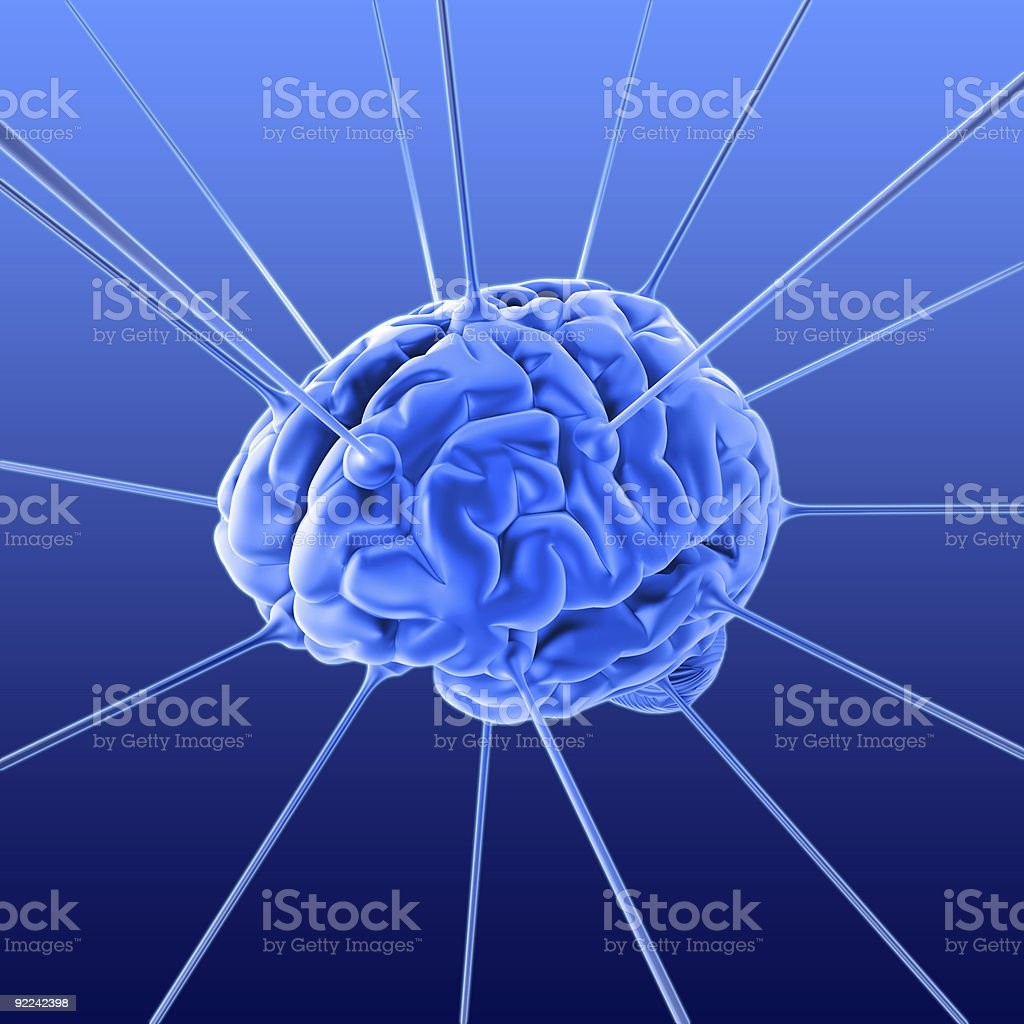 The brain royalty-free stock photo