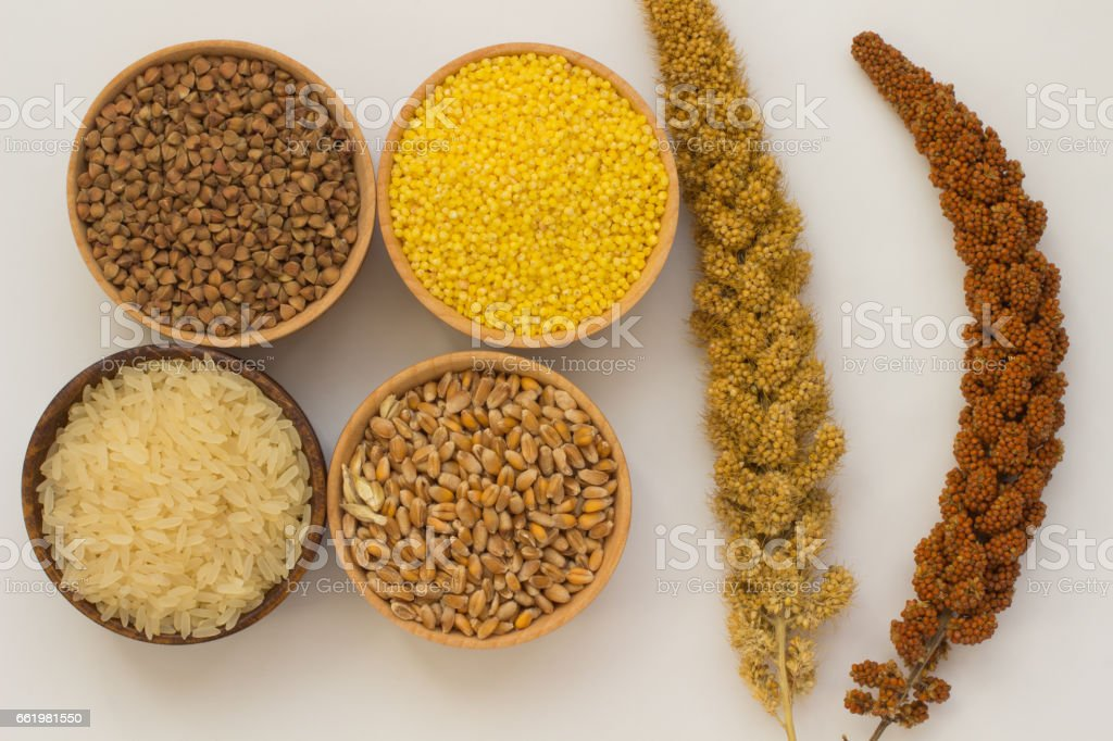 The branches of yellow and red switch grass, rice, millet, buckwheat and wheat on a white background stock photo