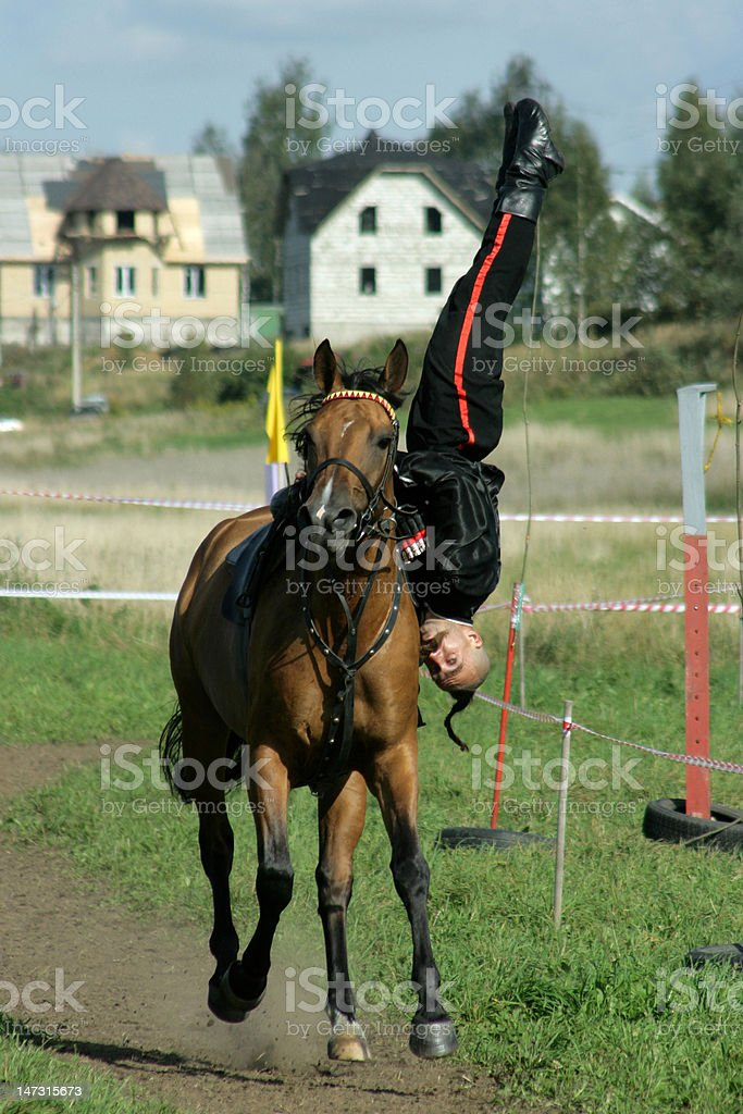 The brave cossack royalty-free stock photo