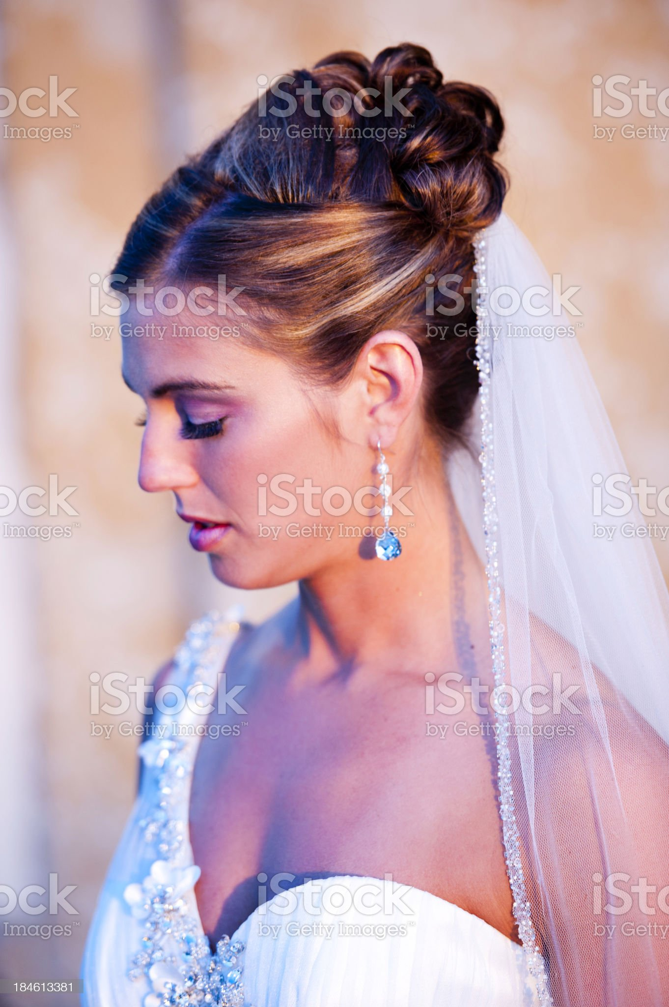 The Bride royalty-free stock photo