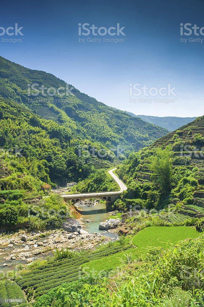 The bridge cross over small brook stock photo