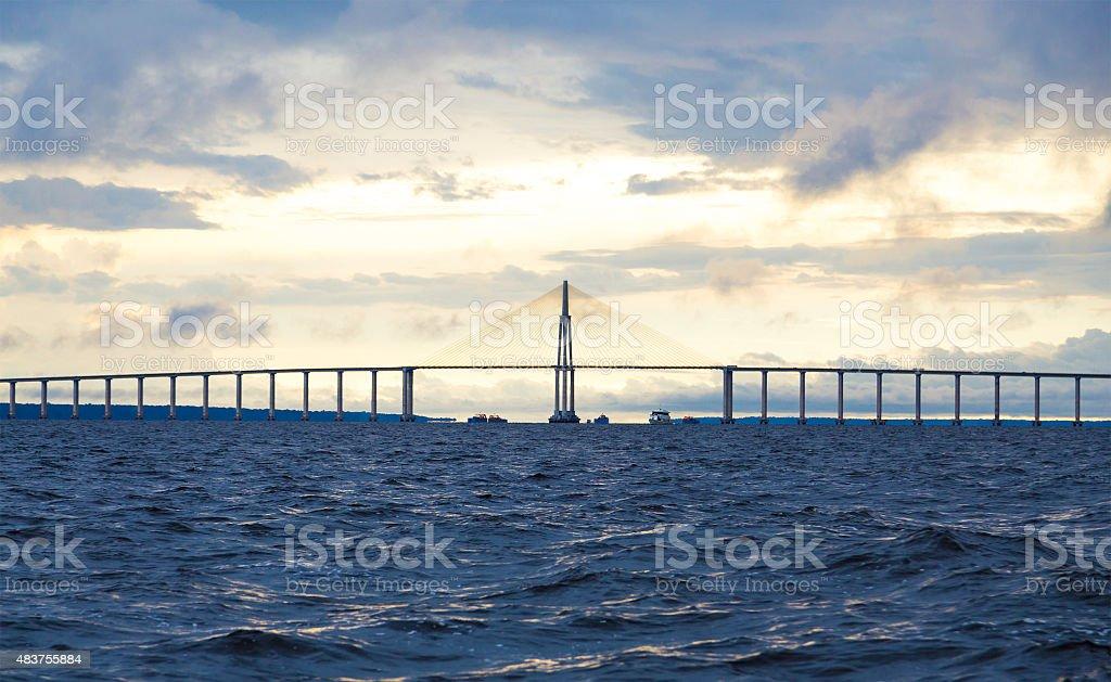 The Bridge in Manaus, Brazil stock photo