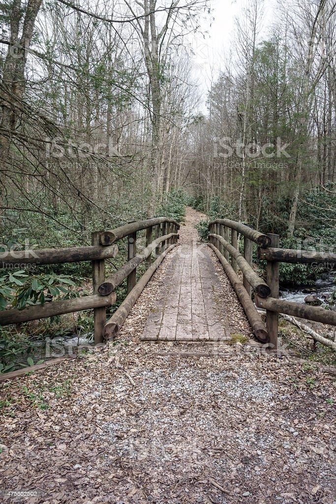 The bridge into the woods stock photo