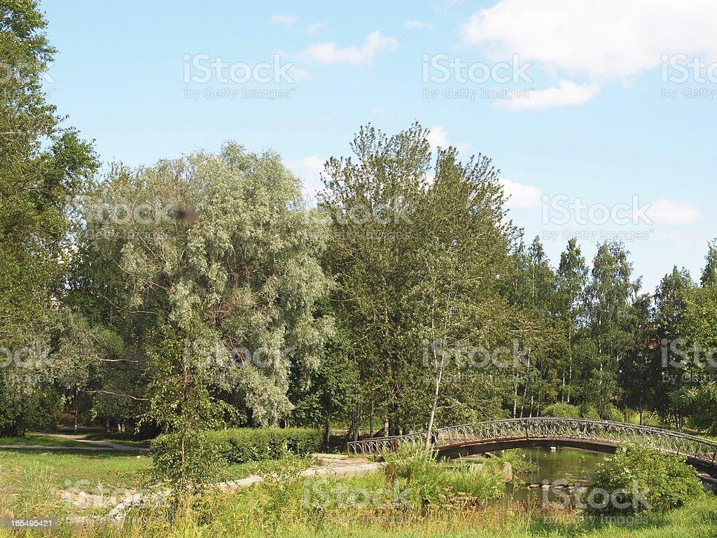 The bridge royalty-free stock photo