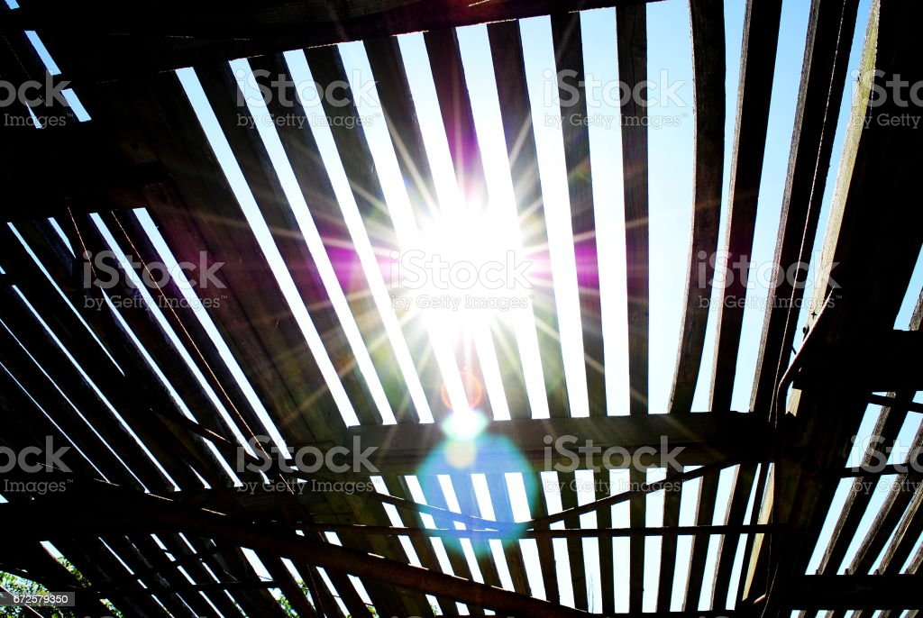 The bright rays of the sun make their way through the summer roof in the form of a lattice stock photo
