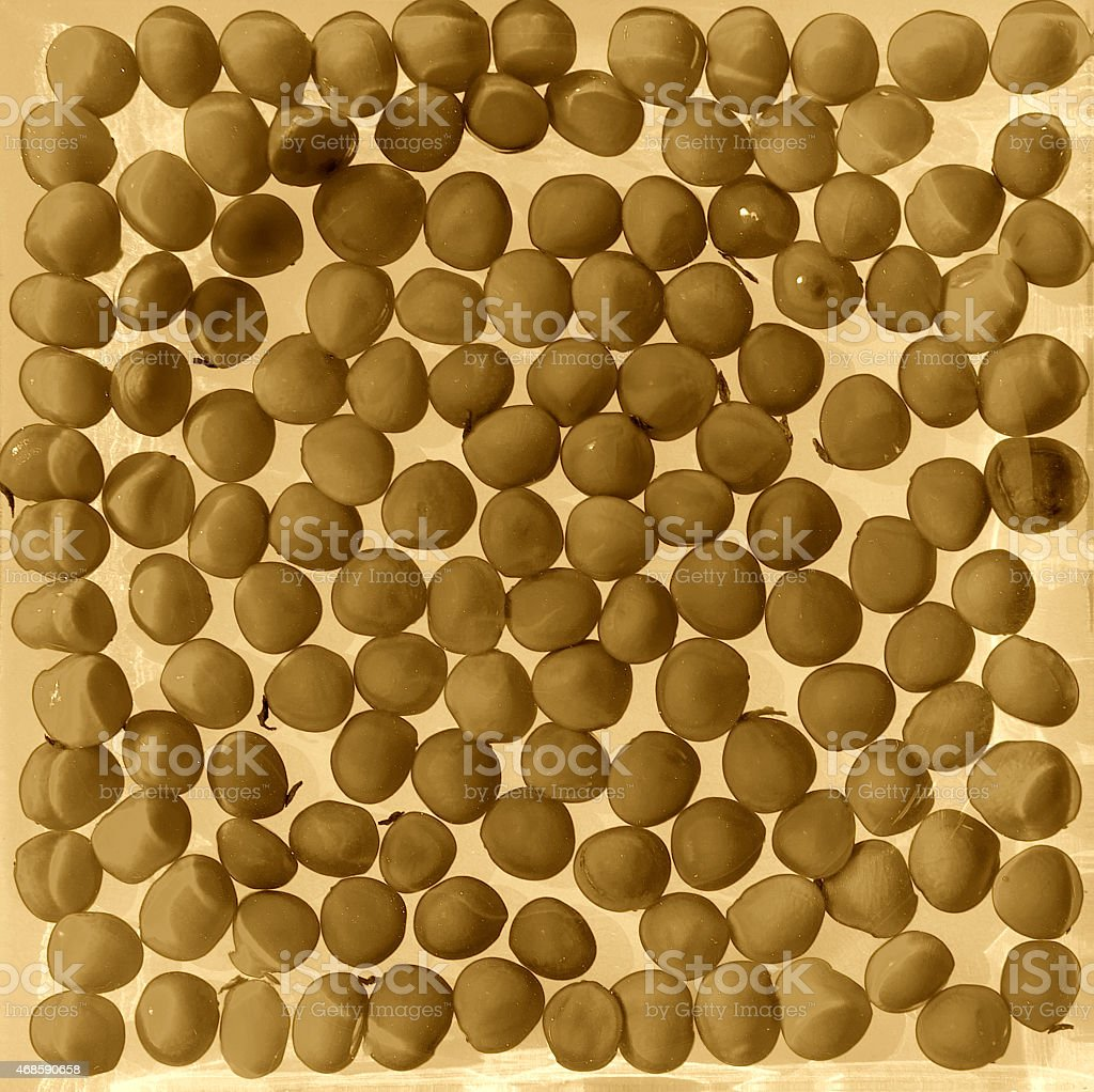The brown seed background royalty-free stock vector art
