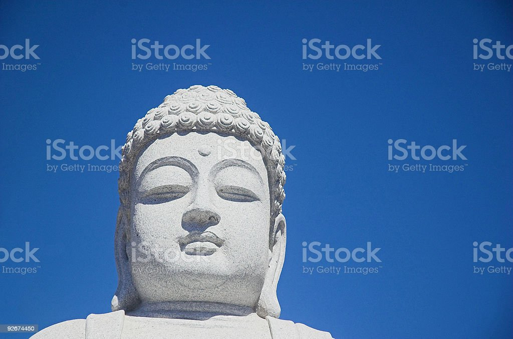 The Buddha stock photo