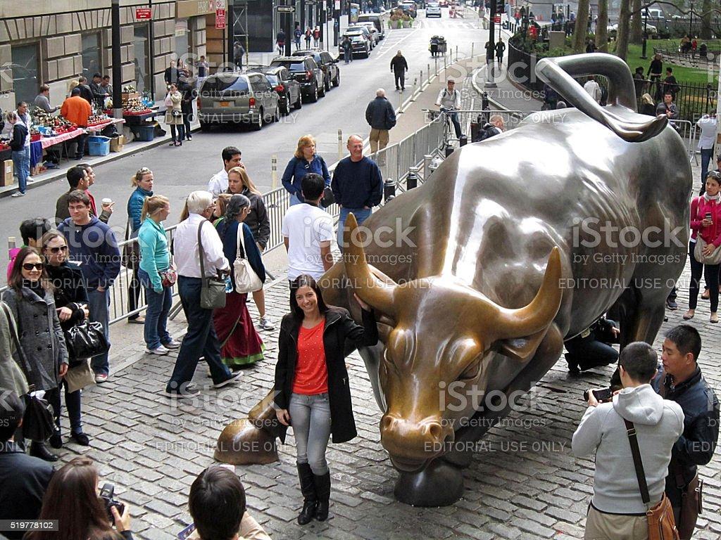 The Bull stock photo