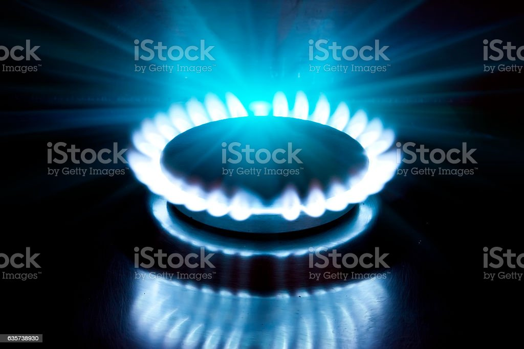 The burning torch on  gas stove stock photo