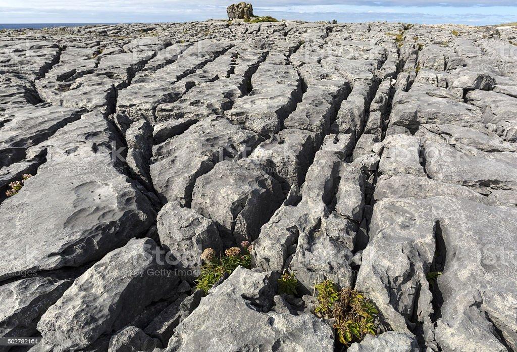 The Burren in northwest County Clare, in Ireland stock photo