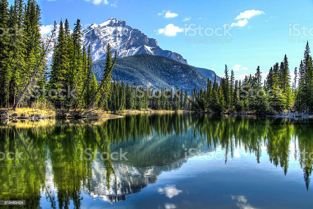 The calm Bow River stock photo