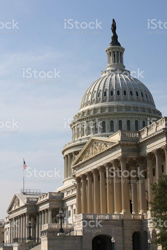 The Capitol in Washington DC (USA) royalty-free stock photo