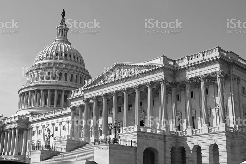 The Capitol in Washington DC (USA) royalty-free stock photo
