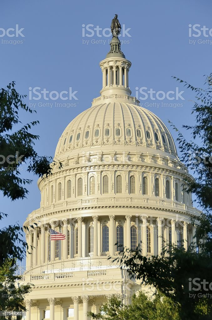 The Capitol stock photo