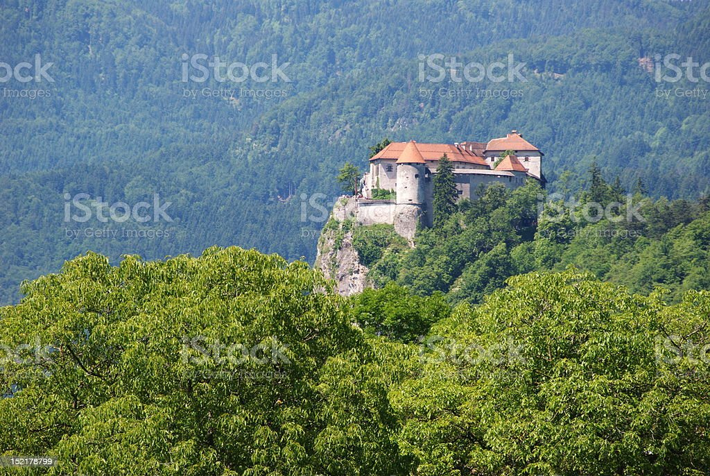 The castle of Bled royalty-free stock photo