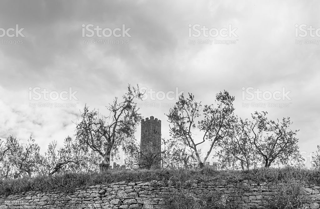 the Castle of Montecchio Vesponi stock photo