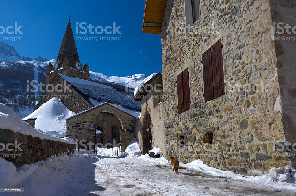The cat on the street in La Grave, France stock photo