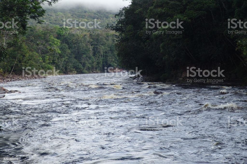 The Caura River stock photo