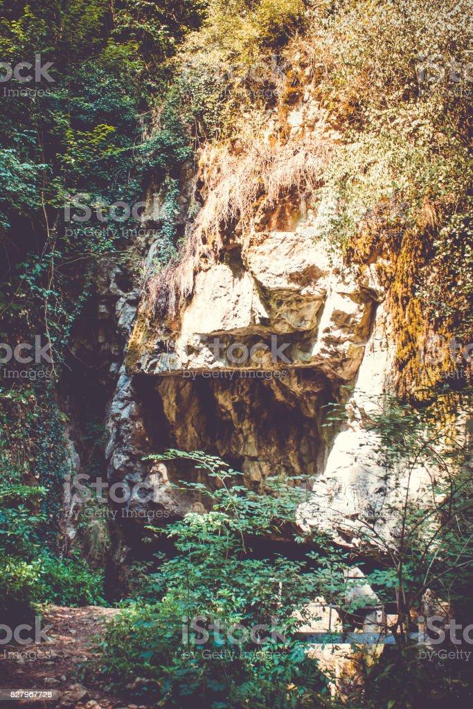 The cave of Vadu Crisului, Bihor, Romania stock photo