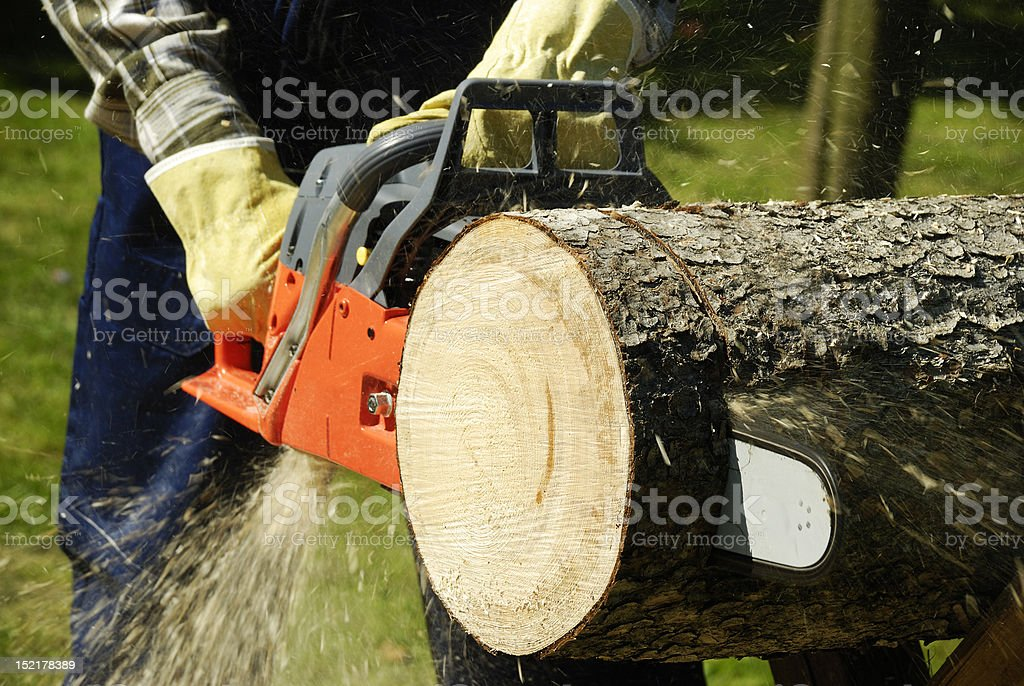The chainsaw stock photo