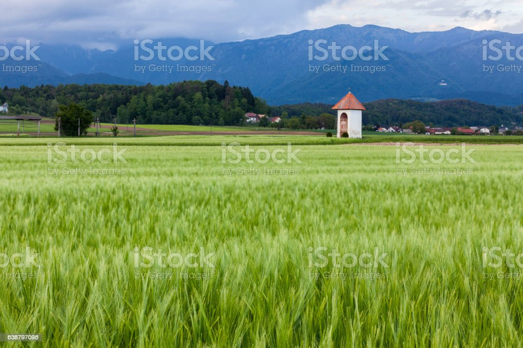 The chapel in the field, Slovenia stock photo