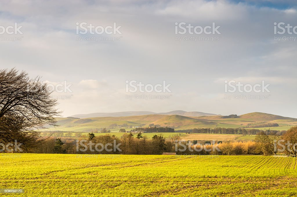 The Cheviot and Hedgehope Hill stock photo