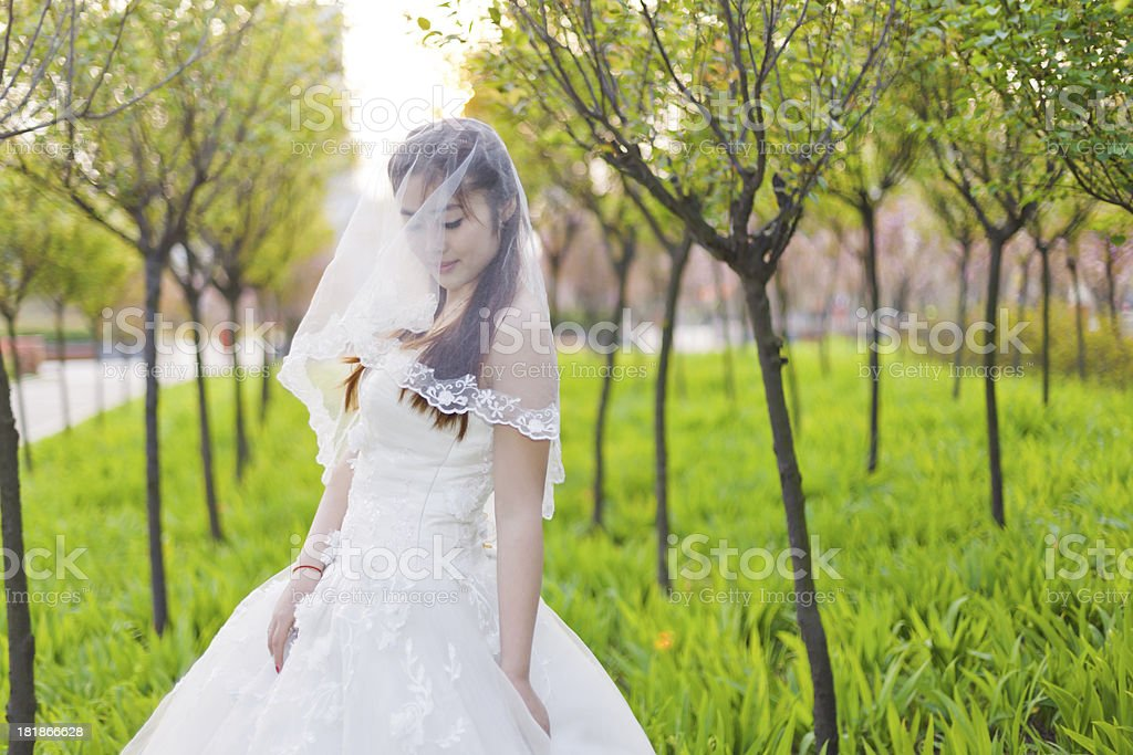 The Chinese bride standing in woods royalty-free stock photo
