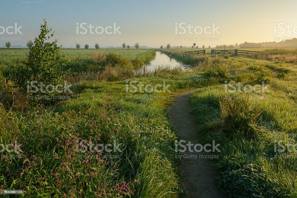 The Chosen Path stock photo