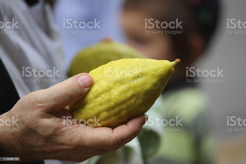The citron royalty-free stock photo