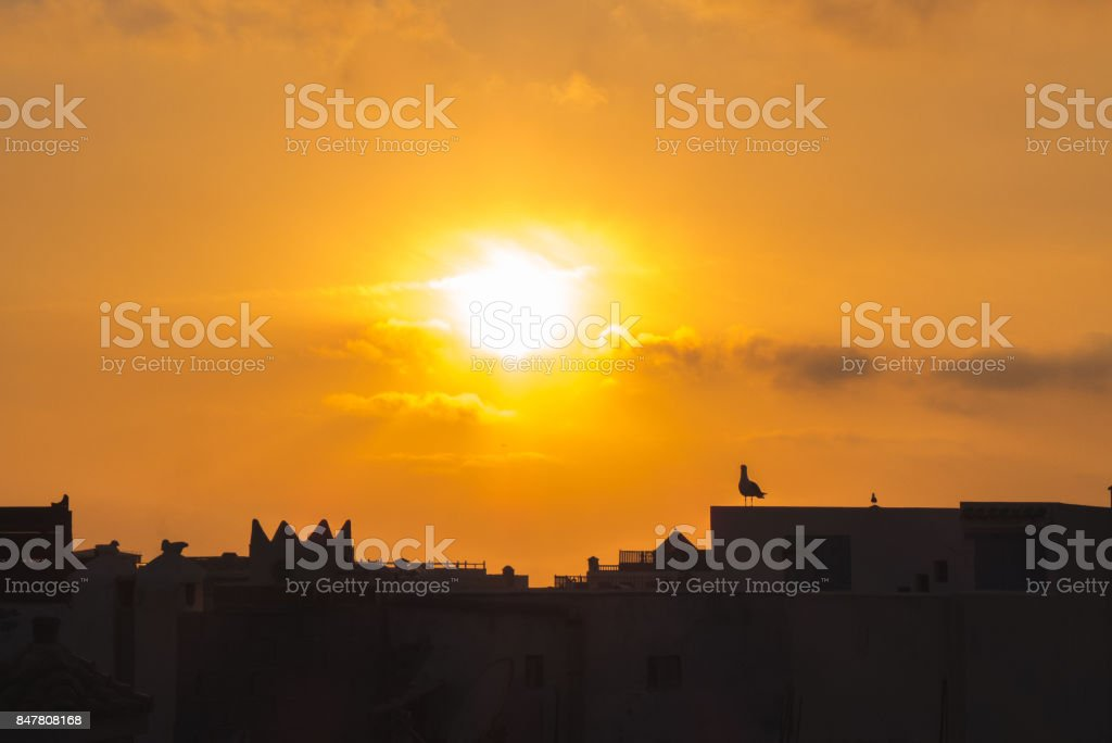 The city at the sunset. stock photo