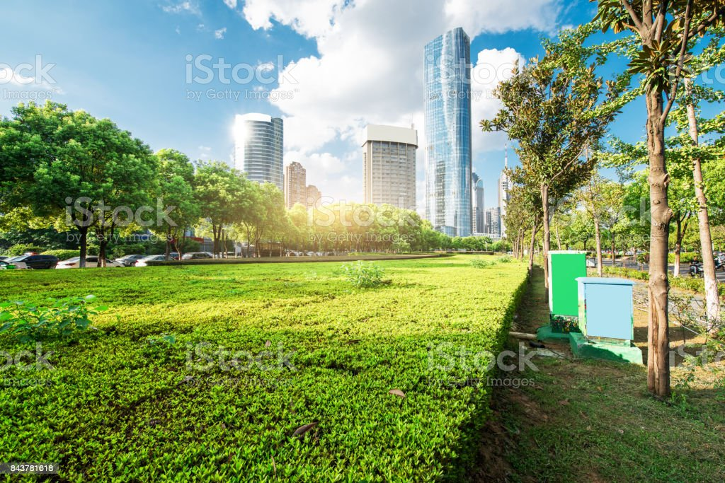 The city's riverside lawn, blue sky and dense high-rise. stock photo