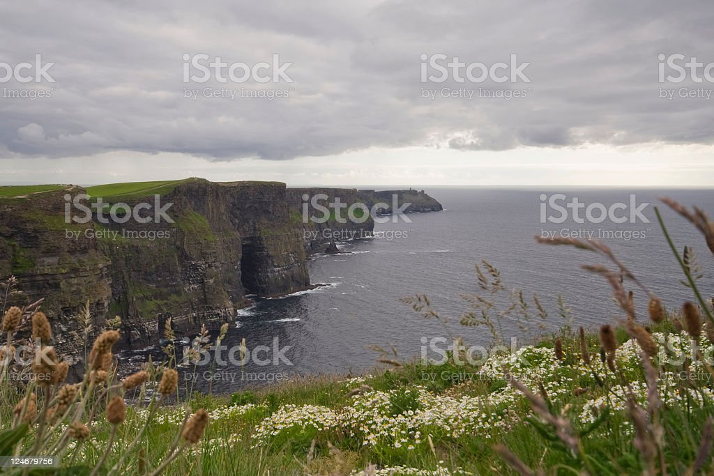 The Cliffs on Moher royalty-free stock photo